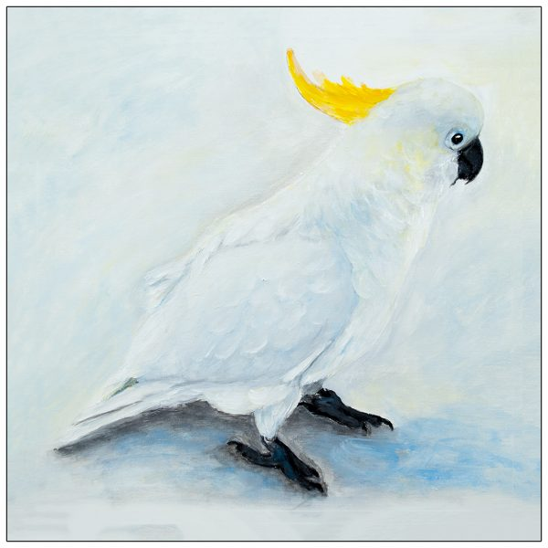 coaster-art-cockatoo-on-ground