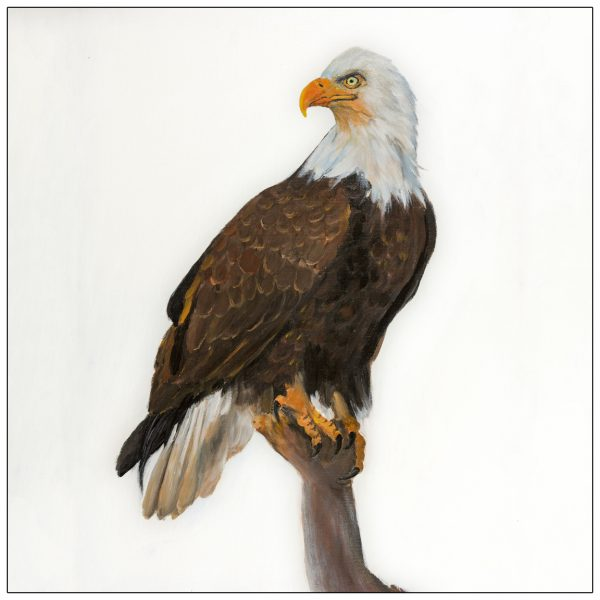 coaster-art-eagle