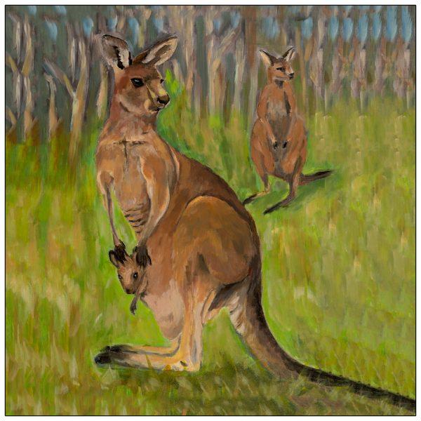 coaster-art-kangaroo-green-background