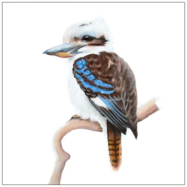 coaster-art-kookaburra-on-branch