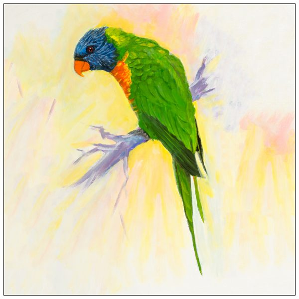 coaster-art-lorikeet-on-short-branch