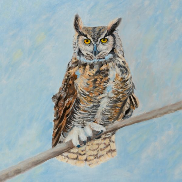 coaster-art-owl-blue-background
