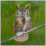 coaster-art-owl-green-background