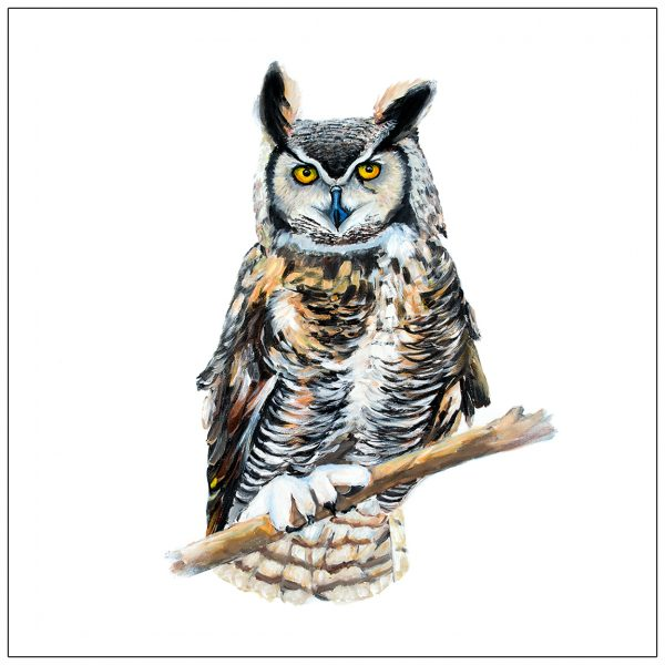 coaster-art-owl-white-background