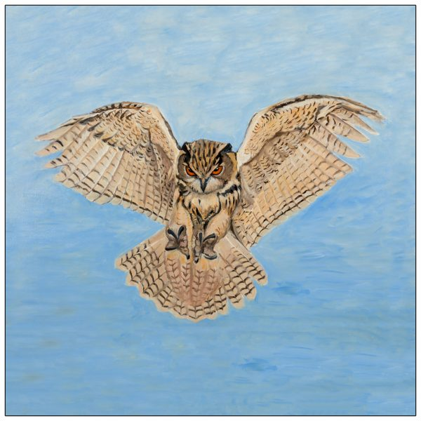 coaster-art-owl-wings-outstretched