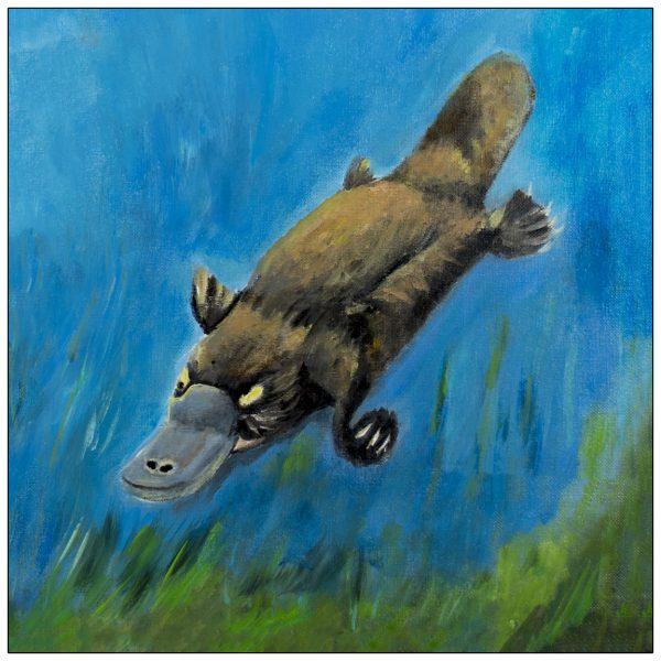 coaster-art-platypus