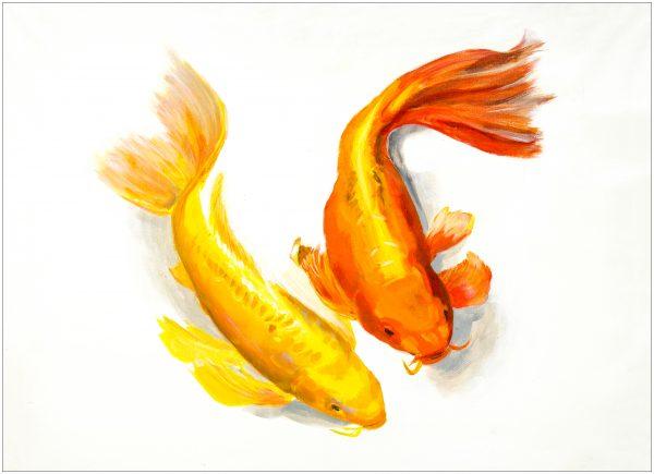 placemat-carp-pair