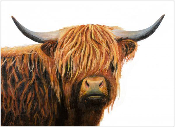 placemat-highland-bull-portrait