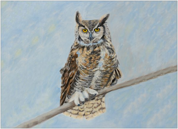 placemat-owl-blue-background