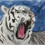 placemat-white-tiger-portrait