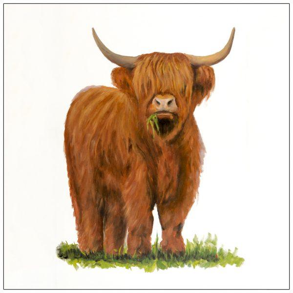 coaster-art-highland-bull