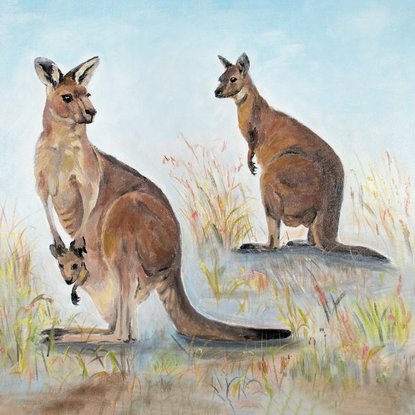 coaster-art-kangaroos