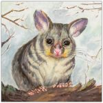 coaster-art-possum-grey-background