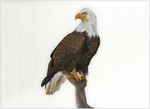 print-eagle