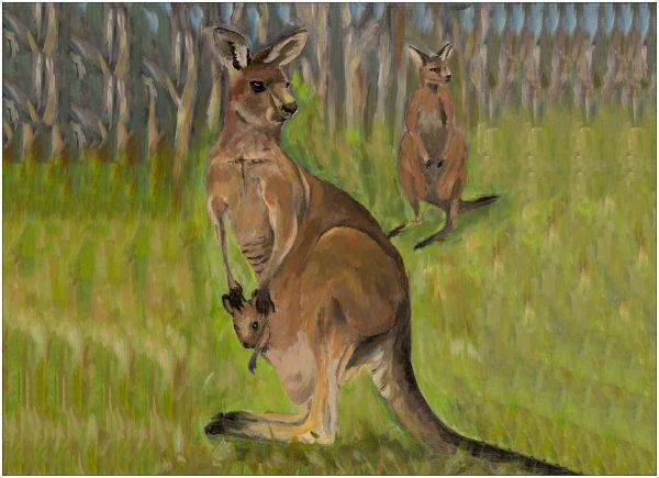 print-kangaroos-green-background