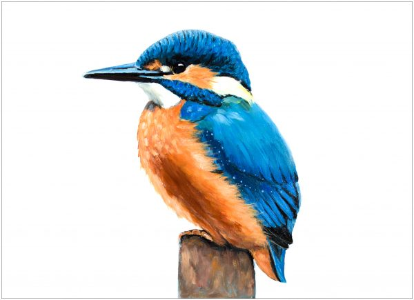 print-kingfisher-on-short-stump
