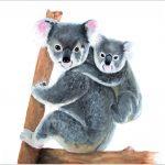 print-koala-and-baby