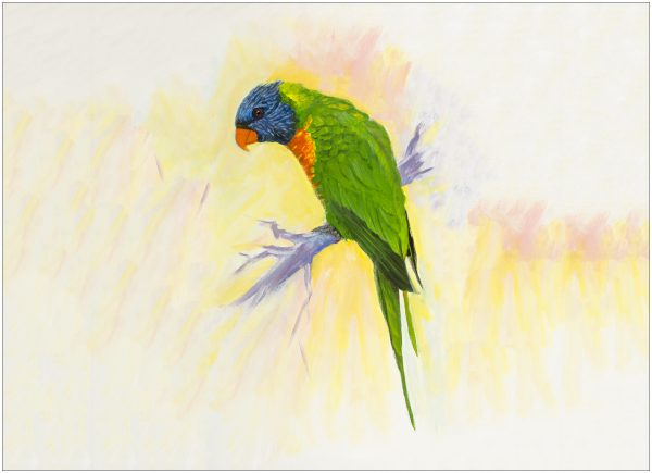 print-lorikeet-on-short-branch