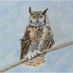 print-owl-blue-background