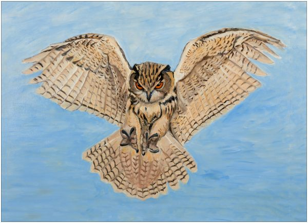 print-owl-wings-outstretched