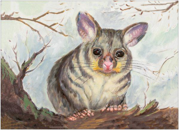 print-possum-grey-background