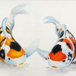 print-speckled-carp-pair