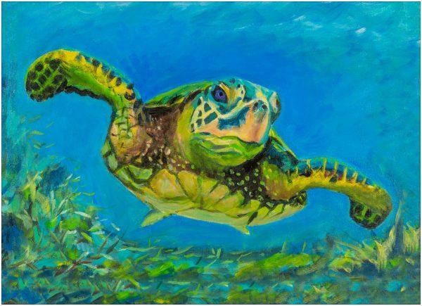print-turtle