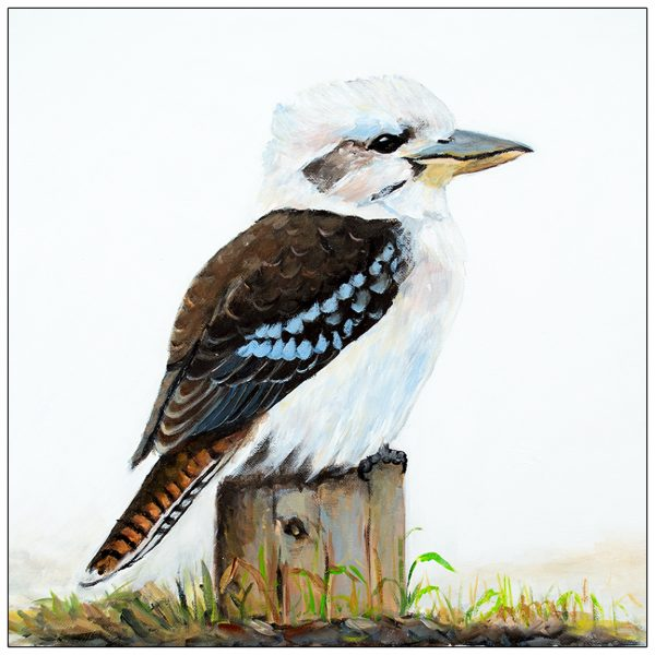 coaster-art-kookaburra-on-stump